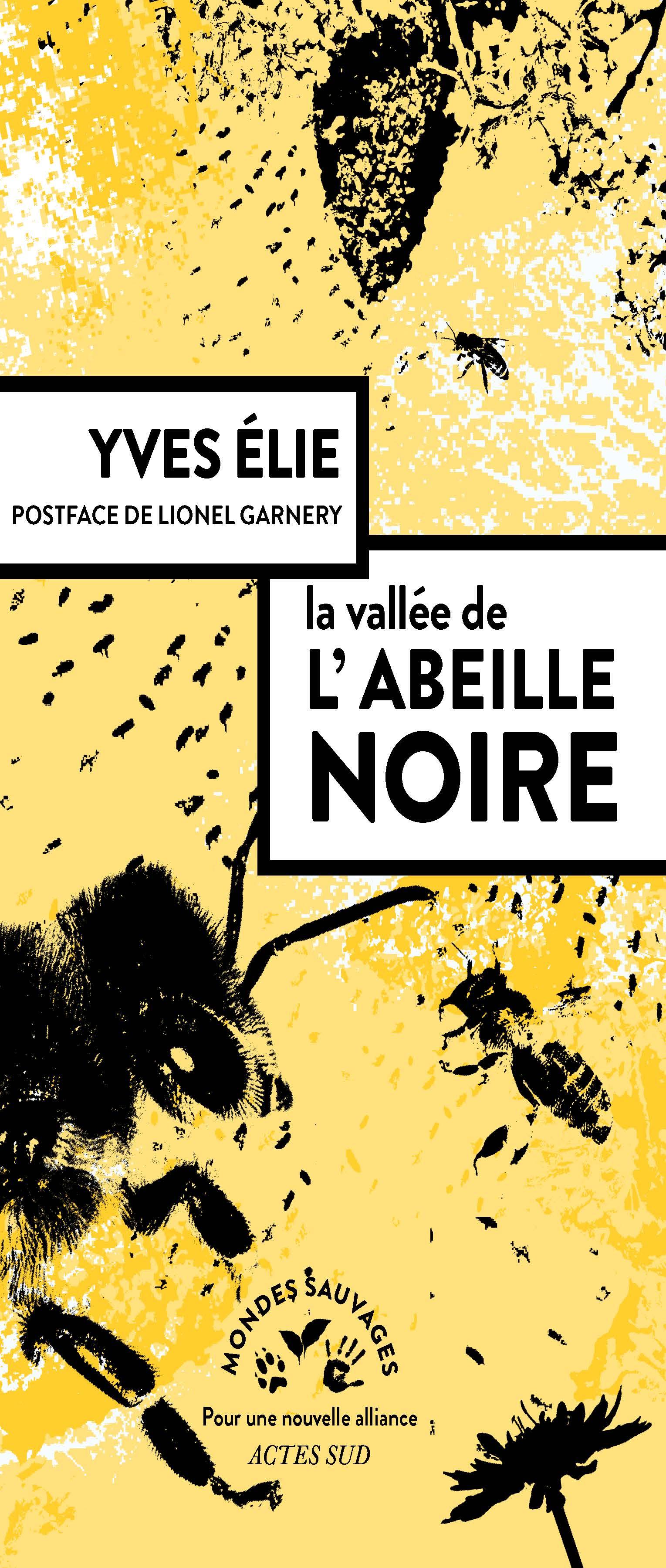 AbeilleNoire (1)